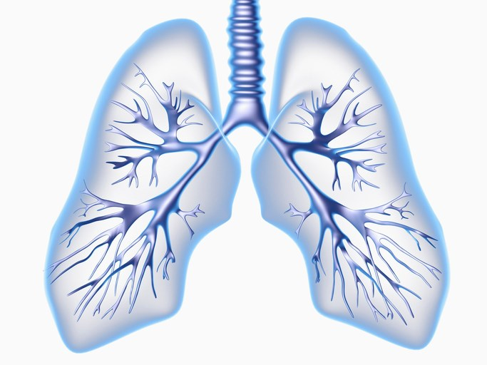 Loss of Lung Function Slowed With Fluticasone Furoate Tx