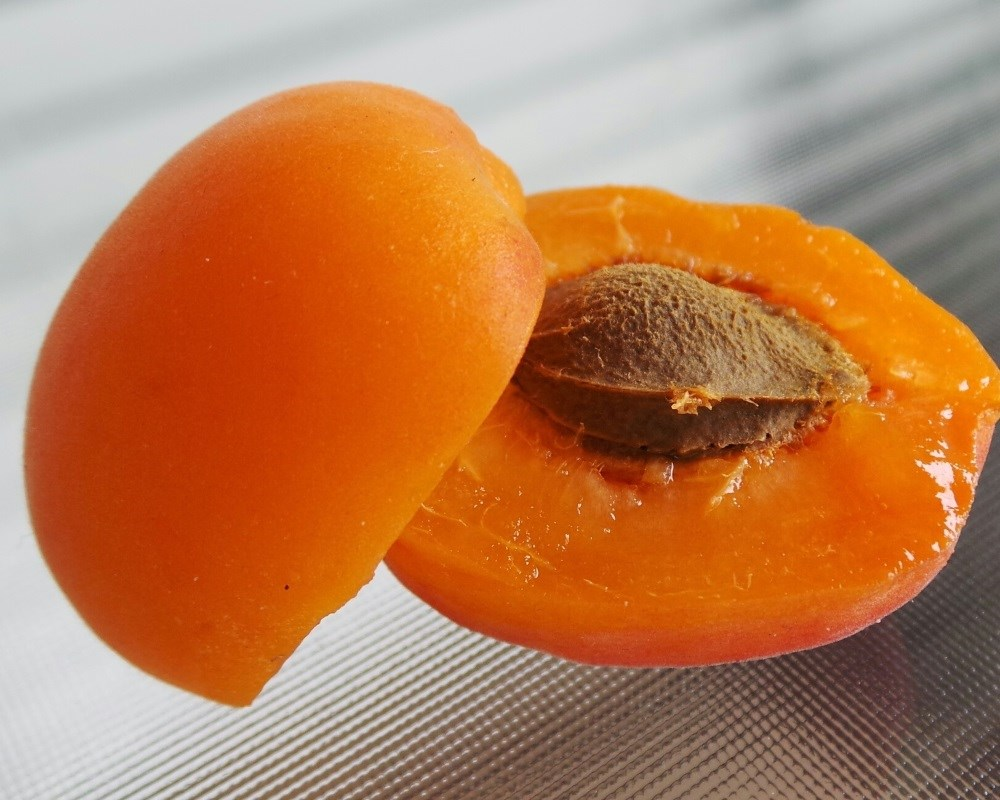 Case Report: Hypoxia Following Chronic Self-Dosing of Apricot Kernel Extract