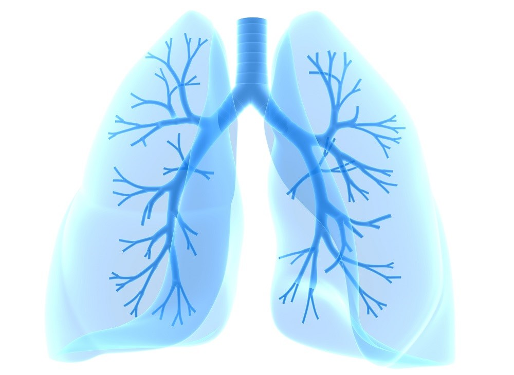 Preserving Lung Function With Dietary Antioxidants