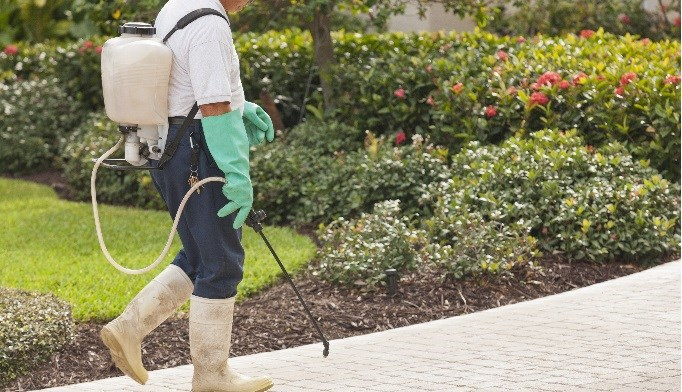Occupational Exposure and COPD: Does Pesticide Exposure Cause Chronic Bronchitis?