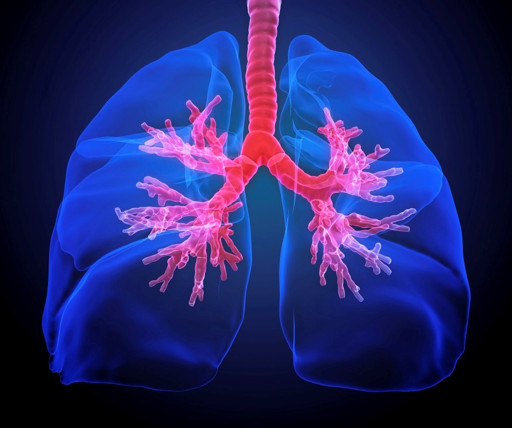 Lung Function in Persistent Asthma Improves With Inhaled Beclomethasone Dipropionate