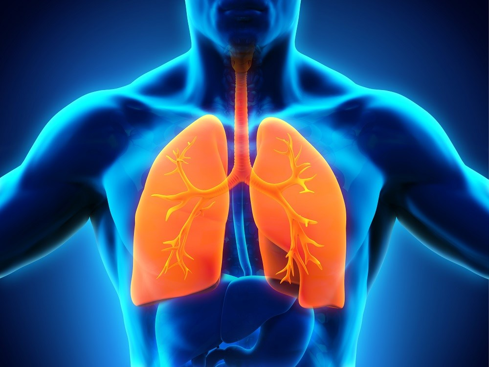 "COPD, Respiratory Symptoms Associated With ""Western"" Diet"