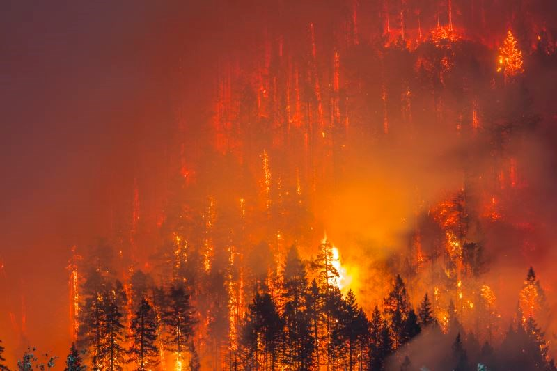 Wildfire Smoke Causes Health Risks