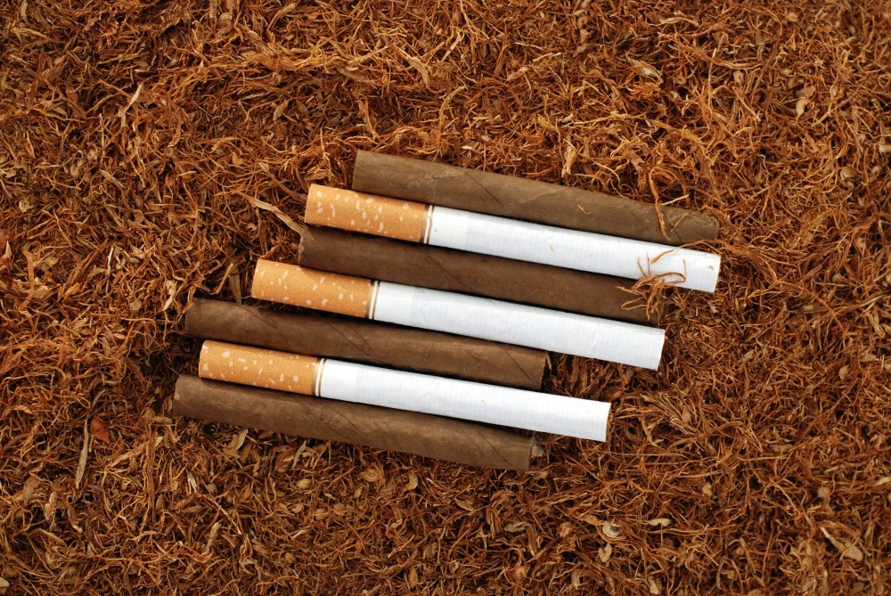 Exclusive Use of Cigarettes, Cigars, and Pipes Increases Mortality Risk