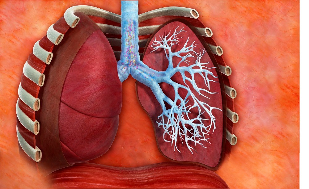 COPD Has Altered Deposition of Inhaled Nanoparticles