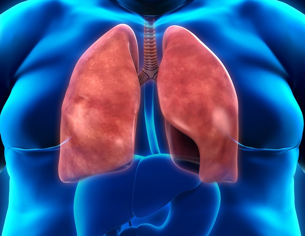 Obesity Linked to Respiratory Infection Risk in Asthma