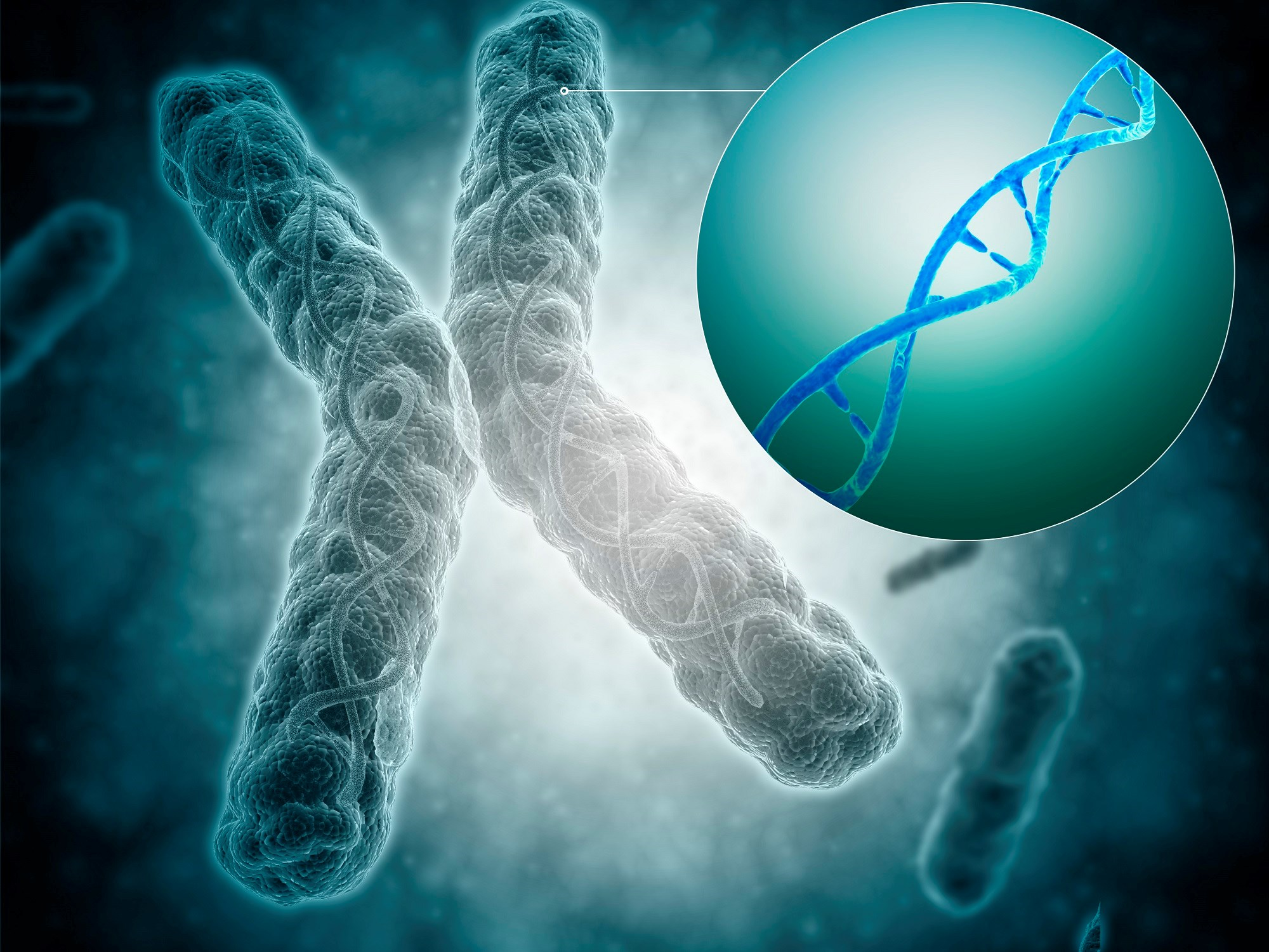 Shorter Telomeres May Predict Poor Outcomes in COPD