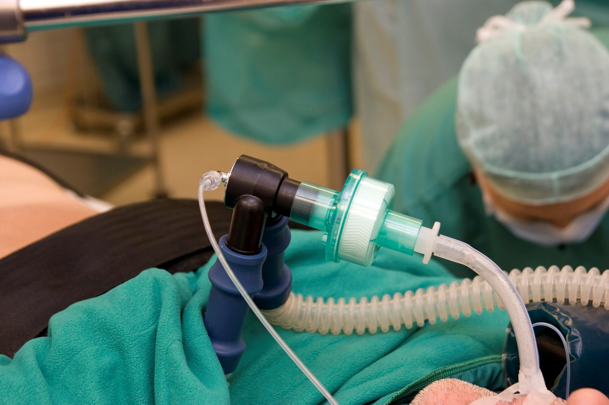 One-Third of Older Adults Die After Emergency Intubation