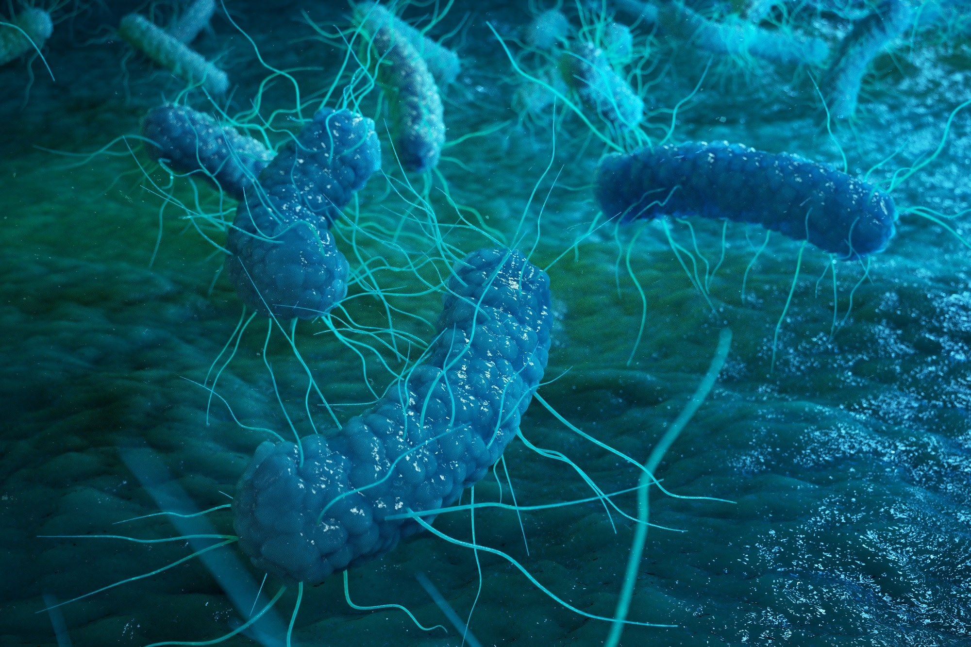 Reduced Perinatal Proteobacteria Exposure Linked to Childhood Wheezing
